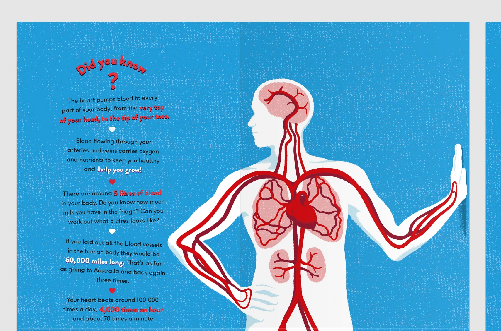 BHF_POSTER_front1.jpg